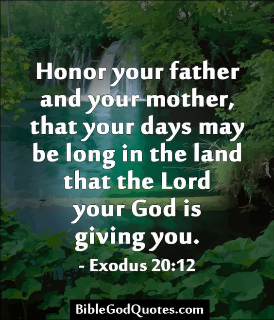 Image result for honor your parents bible verse