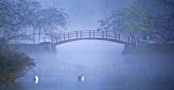 20160614 - Patos enfrentam névoa e forte frio no lago do parque Centenário, em Mogi das Cruzes (SP). A névoa encobrindo a ponte japonesa do parque fez a paisagem lembrar a de um quadro impressionista Imagem: Jonny Ueda/Futura Press/Estadão Conteúdo