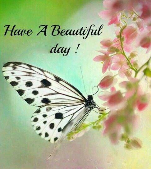 Beautiful day: