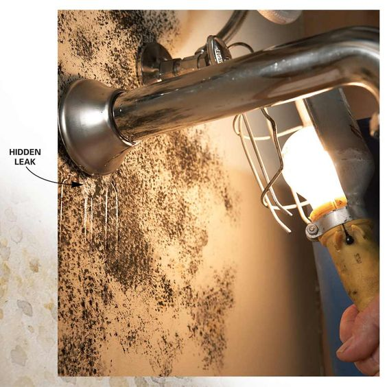 10 TIPS FOR REMOVING MOULD AND MILDEW. Check for Plumbing Leaks - If you see mold near water pipes, waste lines, icemaker lines or plumbing fixtures, chances are the mold is feeding off a nearby leak. Let the water run while you check the pipes and surrounding area for damp spots. Remember that water can travel in any direction—down, sideways or even up when it wicks into absorbent material like drywall—so the actual leak may be some distance from the mold.