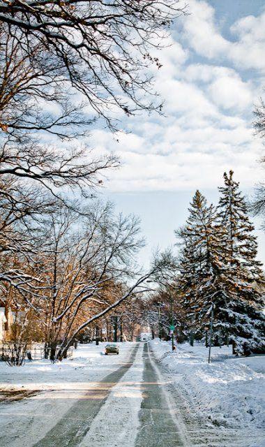 Winnipeg, Manitoba, Canada (Carla Dyck Photography):