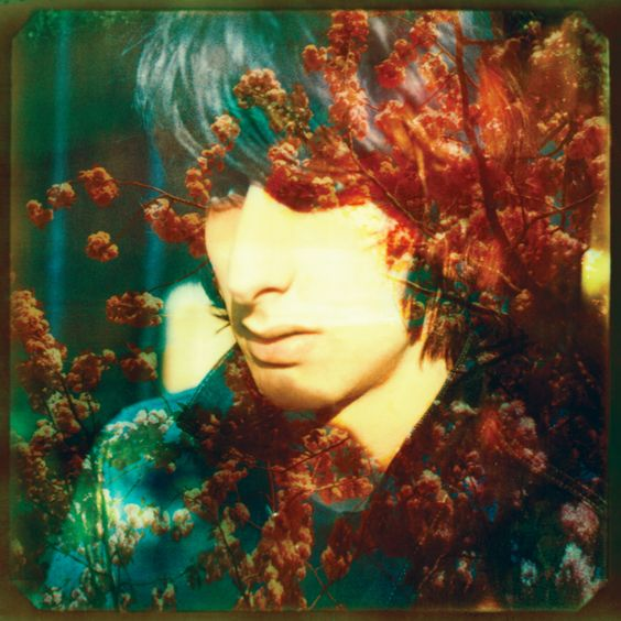 The Horrors by Neil Krug