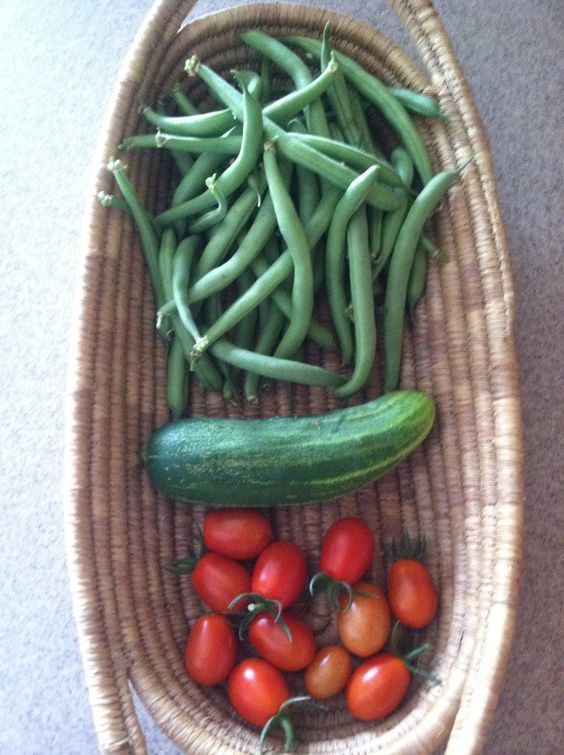 Our 1st #Harvest.  I #love some #fresh #grown #veggies!  #food #foodie #eat #meal #dish
