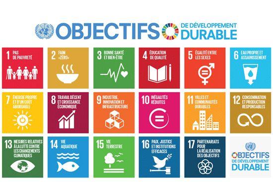Un cadre de suivi et d'examen cohérent pour le Programme de développement durable à l'horizon 2030 - Médiaterre