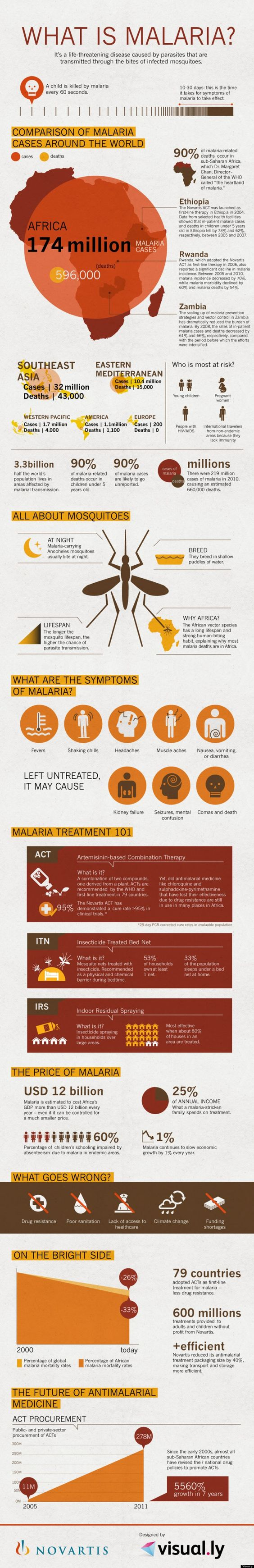 Malaria Is The 'Greatest Success Story In Global Health': Nonprofit