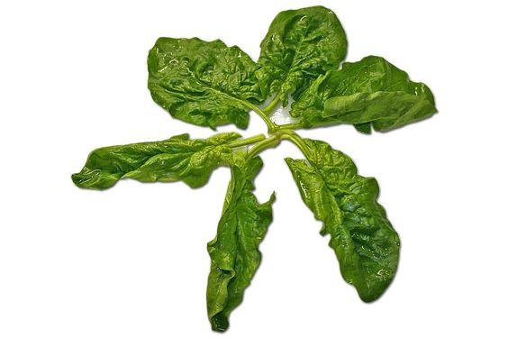 Spinat mag zwar nicht so stark wie Popeye machen, aber seine entzündungshemmenden Eigenschaften sich nicht zu verachten