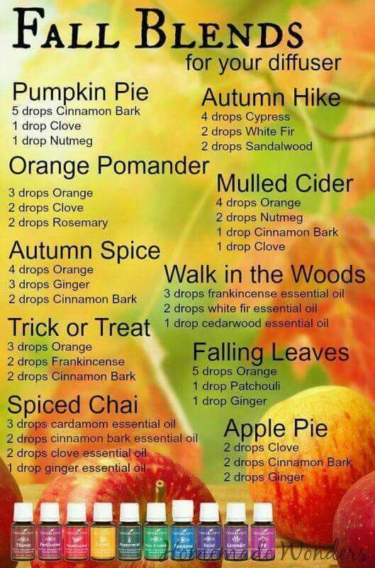 Fall Blends for your diffuser
