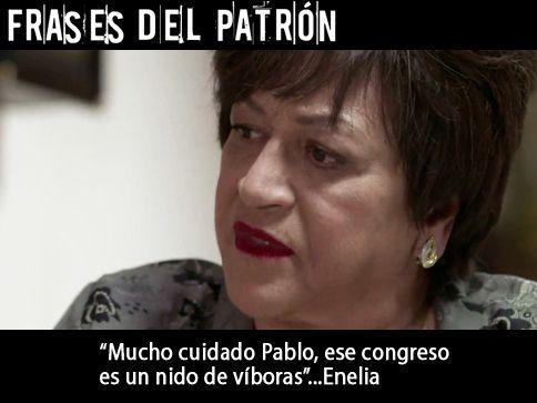 Pablo Escobar - Madre, el congreso es un nido de viboras