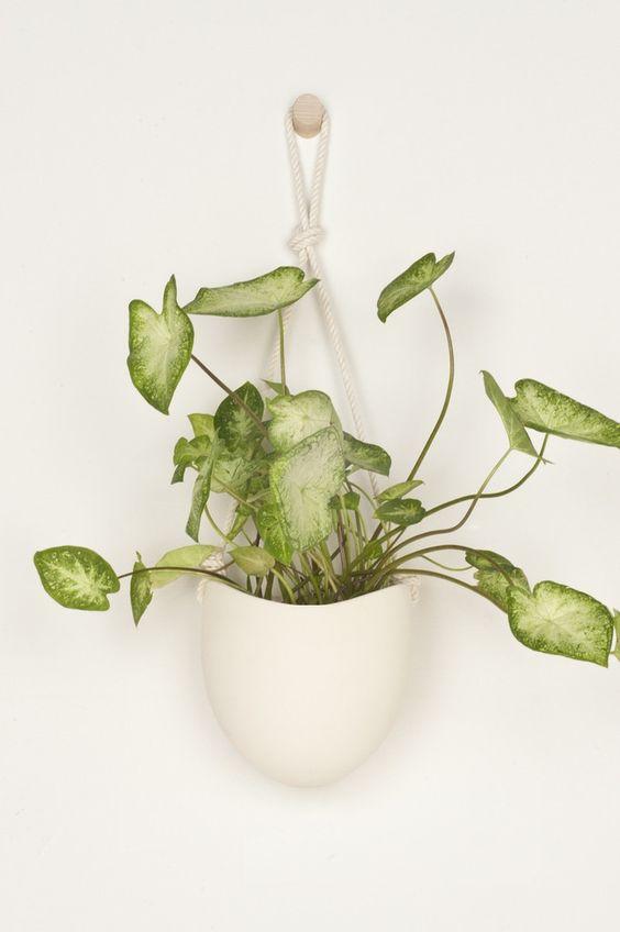 Spora : Large Flat Back Cermaic + Cotton Rope Planter