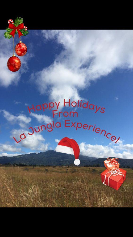 Feliz Navidad from beautiful Boquete, Panama! #feliznavidad #merrychristmas #happyholidays