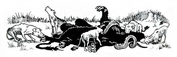 Classic matchup:  Blink Dogs vs Displacer Beast.  (AD&D Dungeon Masters Guide, TSR, 1979.)