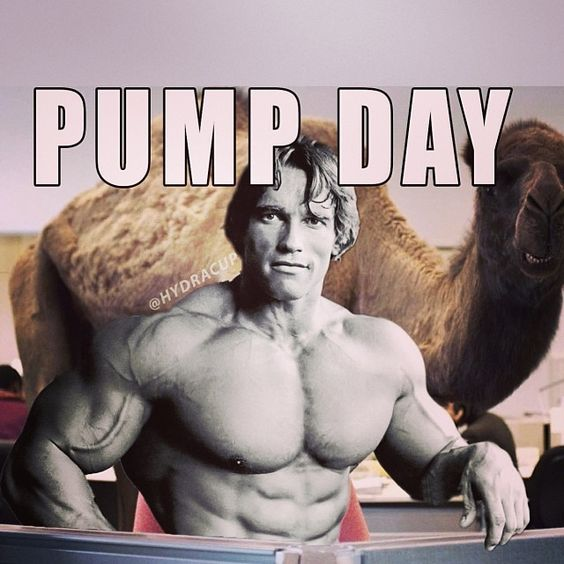 What Day is IT??? #pumpday #thingsarnoldsays