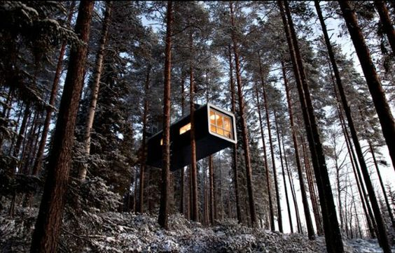 Tree hut for a Swedish hotel, still under construction, but no idea where or what's it called