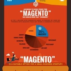 Magento is a strong, secure e-Commerce, PHP frameworks to make an E-commerce web portal. Magento cart is a very popular choice among many PHP framewor
