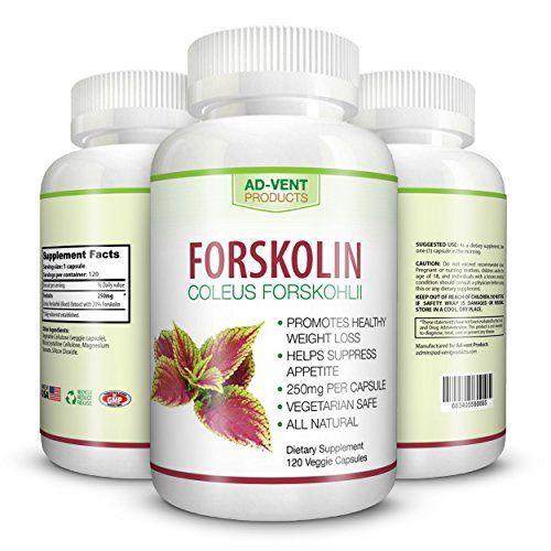 Forskolin for Fat Burning,Best Fat Melt,dr oz fat loss extract, Rapid