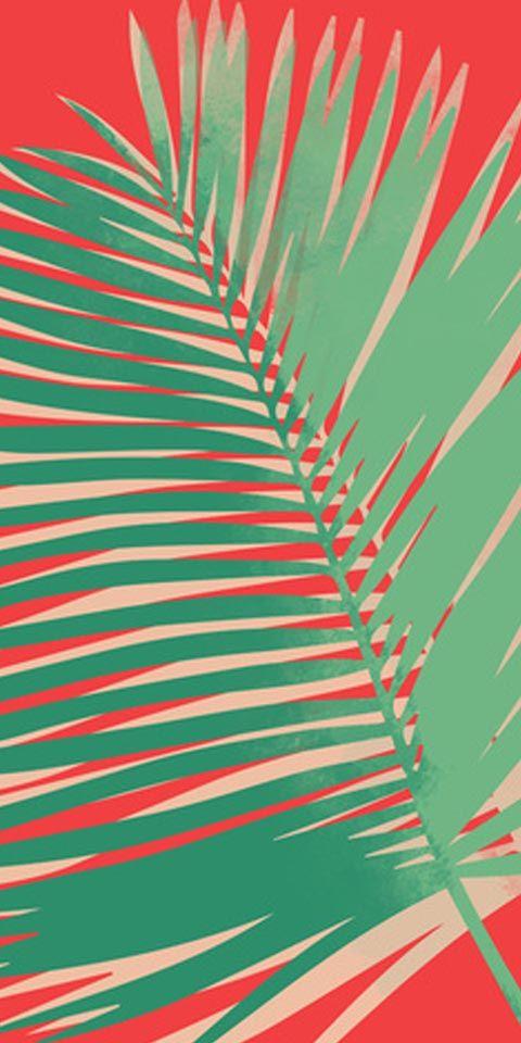 atom palm - allison holdridge