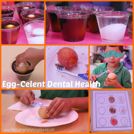 Egg-celent dental health experiment to show students what happens to our teeth when we drink certain drinks and how brushing helps! FREE recording sheet!