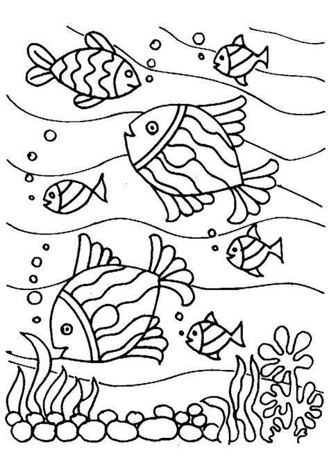√ fische ausmalbilder meer  fischlexikon