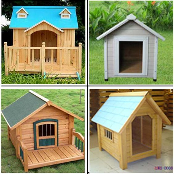 Pets decks and minimalist home design on pinterest for Cool dog kennel designs