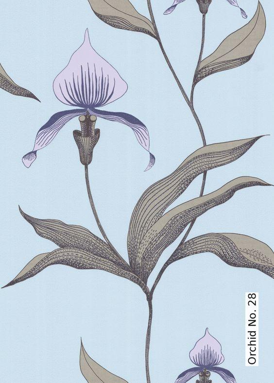 Tapete: Orchid No. 28 - Die TapetenAgentur
