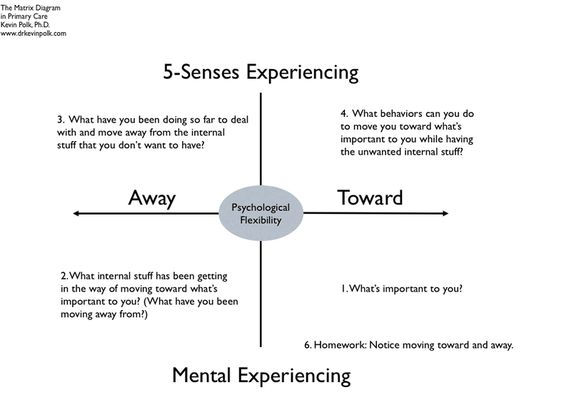 Kevin Polk: Acceptance and Commitment Therapy Matrix | geeky ...