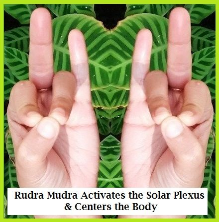 Mudras help to channel the flow of energy through the body. The five fingers represent the five elements: Apaan Mudra-Detoxify, Purify, EnergizeThumb – Fire. Index – Air. Middle – Ether or the spaces between cells within the body. Ring – Earth. Pinky – Water. From a yoga scientific perspective, electromagnetic currents in the body are brought into balance by joining fingers in a variety of ways. Accordingly, a mudra is believed to affect the flow of energy or prana through the body. The Apaa...