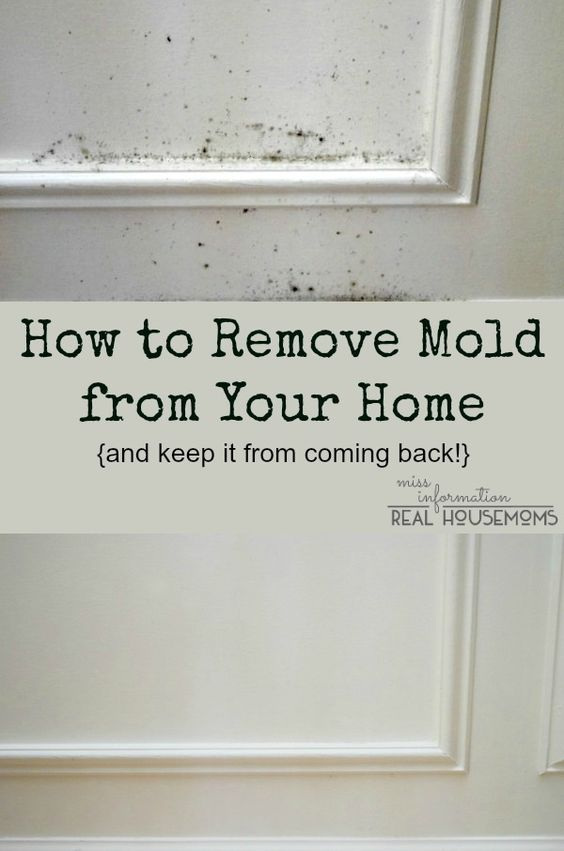 How To Remove Mold From Bathroom Walls Ceilings Apps Directories