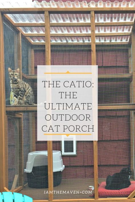 If You Have Indoor Cats The Want To Go Outside Diy A Catio This Outdoor Cat Enclosure Keeps Your Outdoor Cat Run Outdoor Cat Enclosure Outside Cat Enclosure