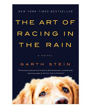 Summer Reading List: The Art of Racing the Rain by Garth Stein: