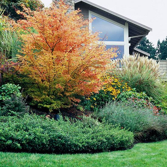 Sunny landscape ideas gardens sun and front yards for Ornamental grass bed