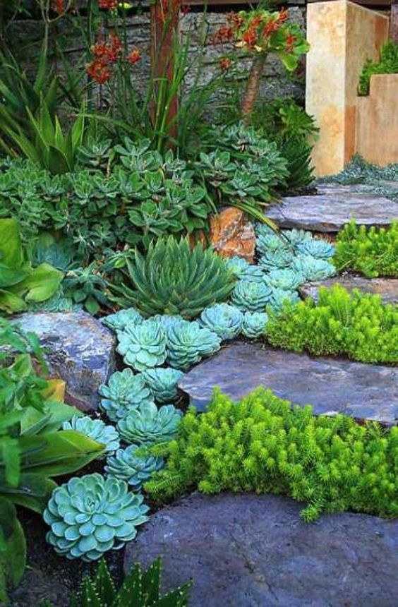 Succulents Line Up The Steps And Rock Steps Add Chic To The Plants Especially Bold Gre Rock Garden Landscaping Courtyard Gardens Design Landscaping With Rocks