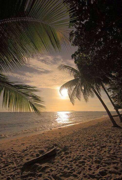 Good Morning Beach