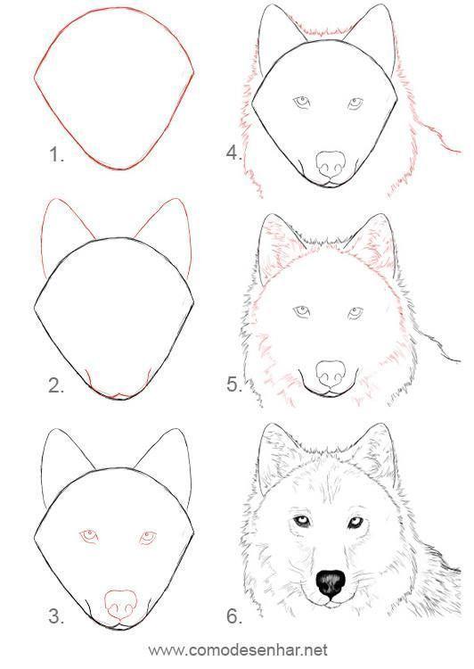 Tiere Malen Tiere Animals Malen Zeichnen Zeichnen Malen Und Zeichnen Hund Zeichnen