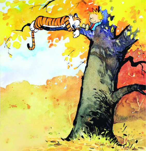 Pinterest the world s catalog of ideas for Calvin and hobbes kids room