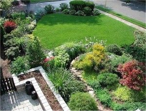 small lawn, garden beds