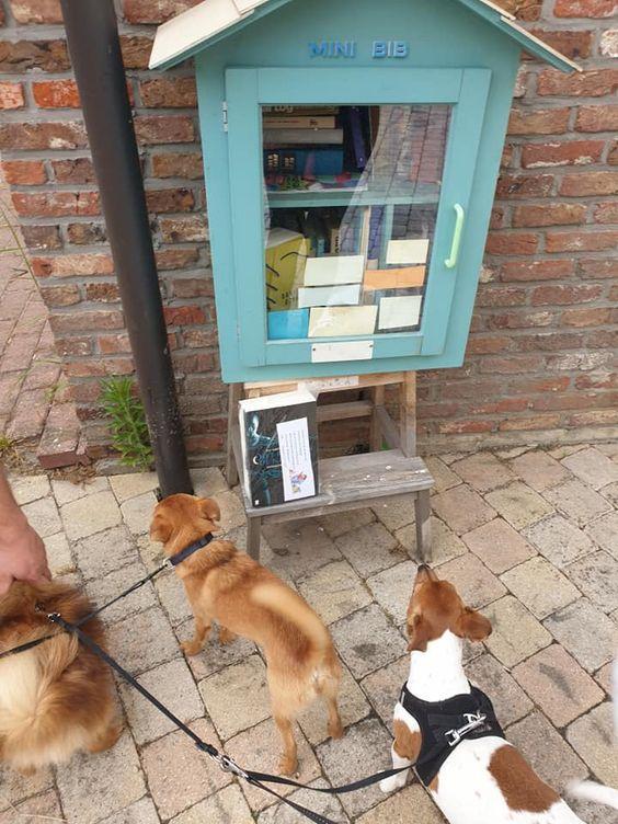 Boekenruilkastje Appels Dendermonde