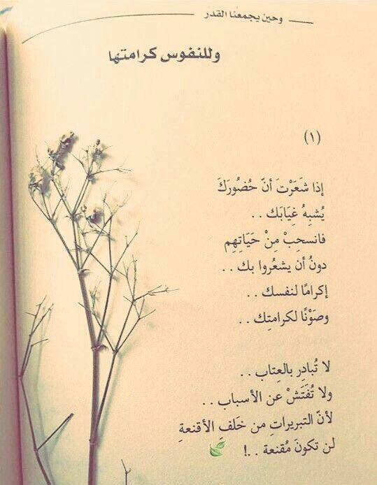 حاضر Book Quotes Arabic Love Quotes Life Quotes