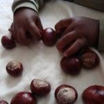 play_with_conkers