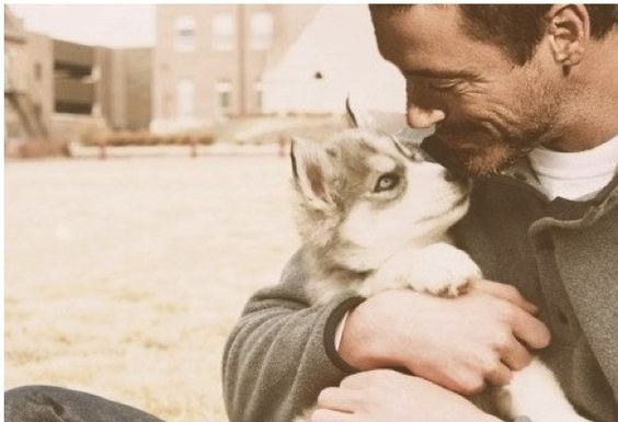ROBERT DOWNEY JR AND A HUSKY PUPPY?!??! JUST.... I CAN'T EVEN...