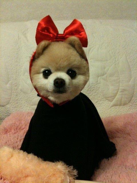 I am very cute!