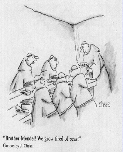 Genetics humor- My Absolute favorite cartoon!!!