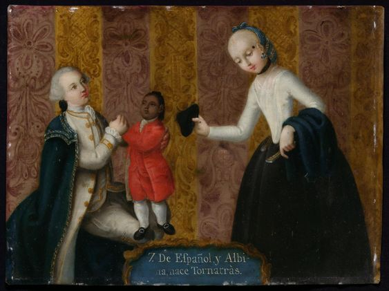 7. De Español y Albina, nace Tornatrás (From Spaniard and Albino, and Return-Backwards is born) | Museum of Fine Arts, Boston
