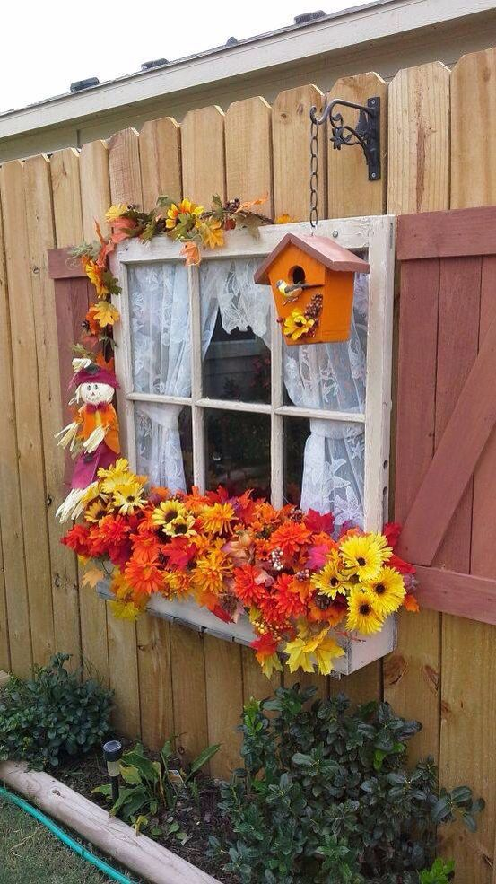 Window Decorated For Fall