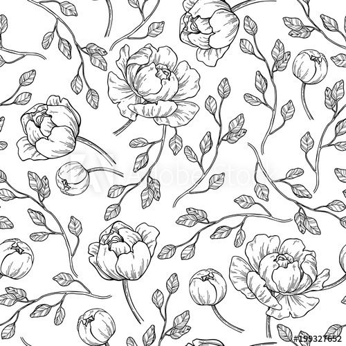 Peony Flower Seamless Pattern Drawing Vector Hand Drawn Engrave Flower Line Drawings Flower Pattern Drawing Peony Drawing
