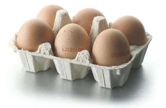 11 Uses for Egg Cartons