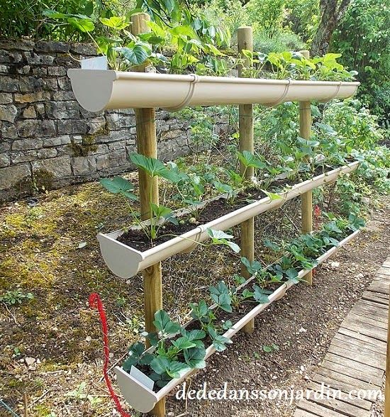 Comment faire pousser des fraises en hauteur d d dans for Amenagement potager idees