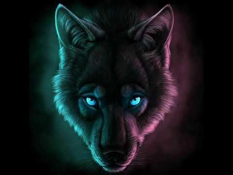 Iyileri Olduren Dunya Remix Youtube Youtube Wolf Animals