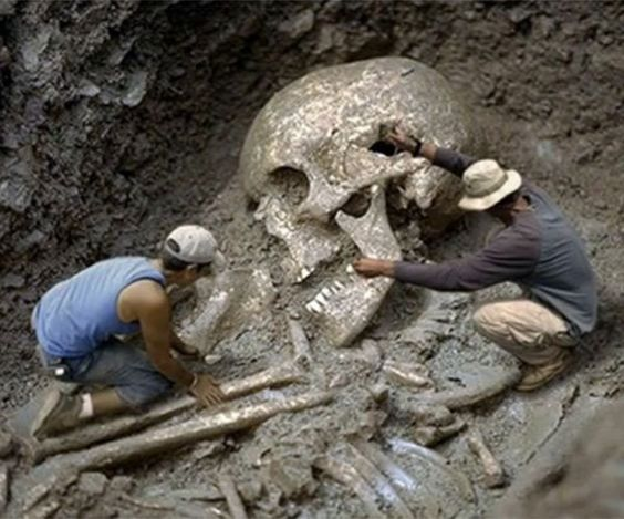 Giant skeleton, Human ...