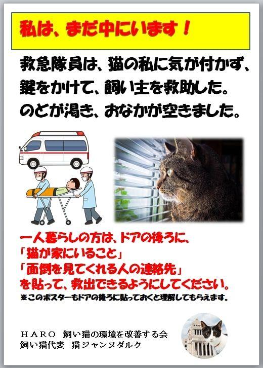 万一の場合 おしゃれまとめの人気アイデア Pinterest Parama000 猫 保護 猫の健康 ネコジルシ
