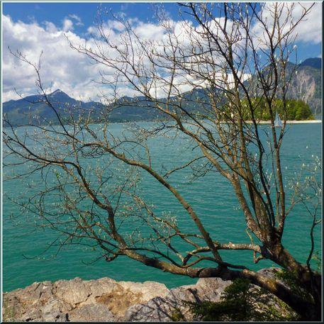 'Walchensee (3)' von Rudolf Büttner bei artflakes.com als Poster oder Kunstdruck $16.63